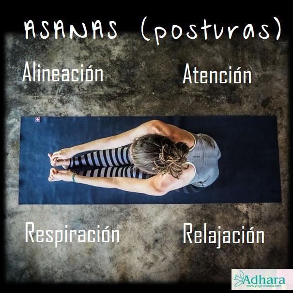 principios asanas yoga